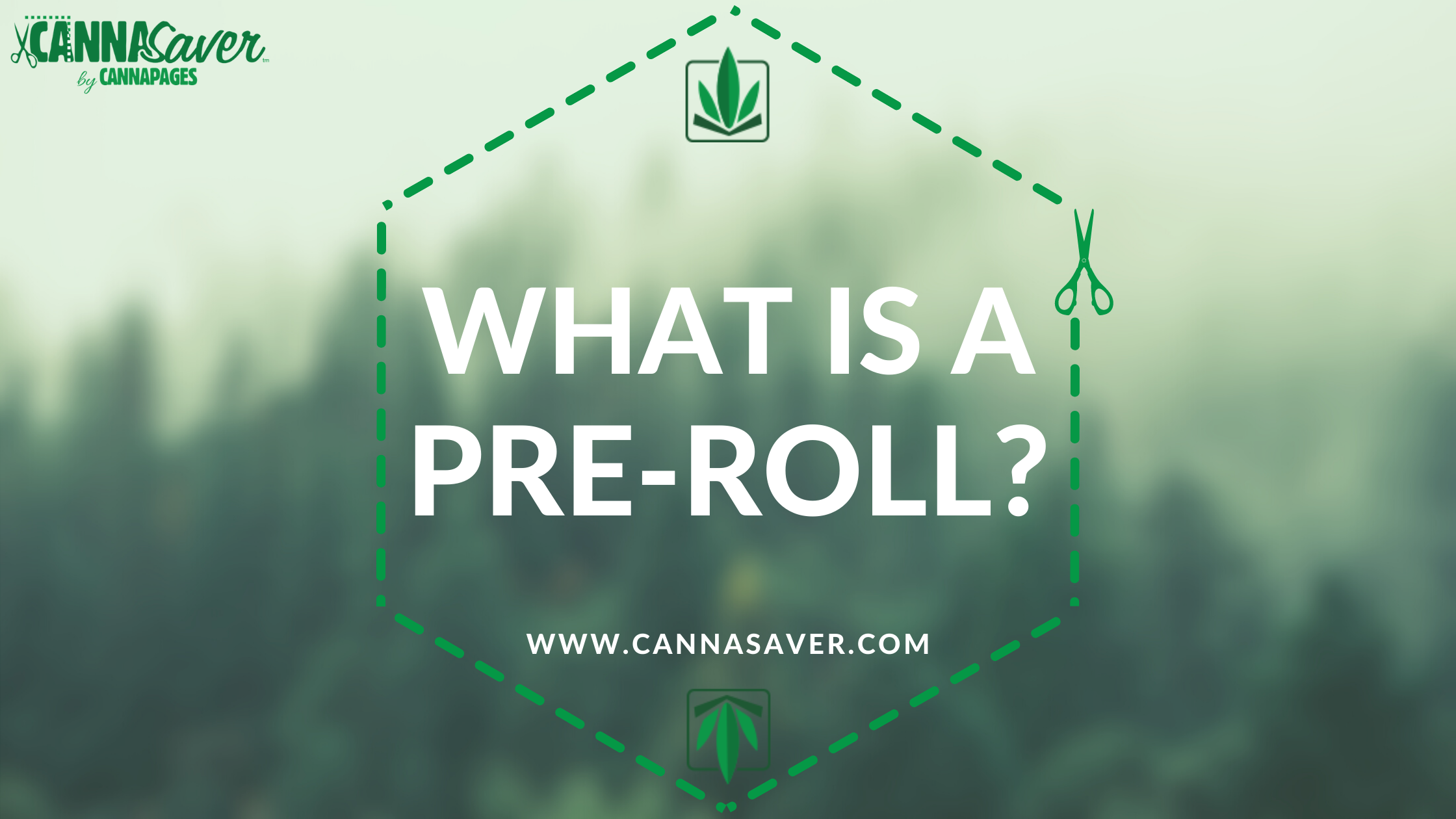 What Is a Preroll?